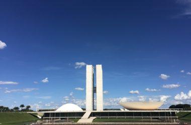 Imigrantes brasileiros possuem representantes oficiais no Governo Brasileiro