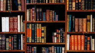 Busca de documentos portugueses