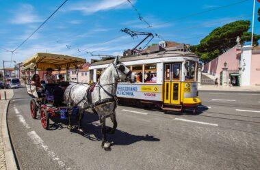 Como provar ligação no processo de nacionalidade portuguesa